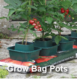 Grow Bag Pots for Tomatoes