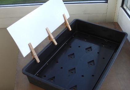 Tray useful for transplanting and seed sowing with reflector.