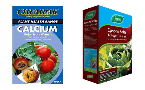 calcium and epsom salts for tomatoes