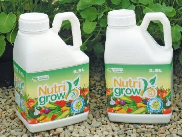 Nutri Grow and Standard Tomato Feed Compared