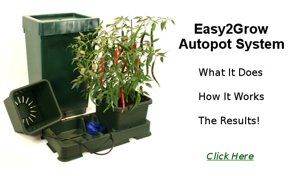 Easy2Grow Autopot System Review