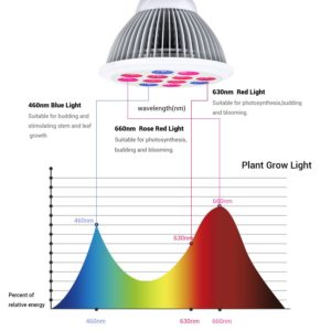 Grow Light Red Blue Spectrum