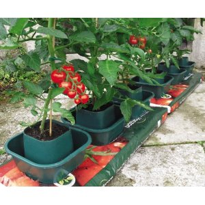 Grow Bag Pots