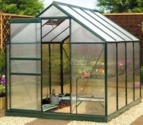 The Benefits of Growing Tomatoes in a Greenhouse