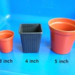 Pots for Seedlings