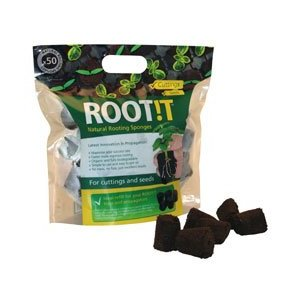 Rootit Sponges - great for Cuttings from Tomato Plants