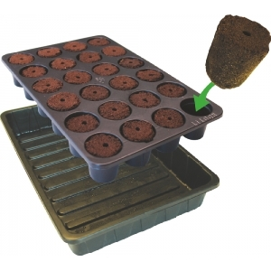 Root It Tray and Sponges
