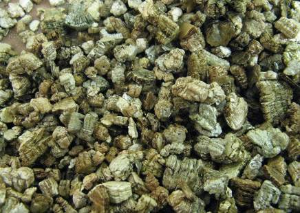 vermiculite for tomatoes