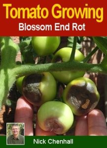 How To Avoid Blossom End Rot