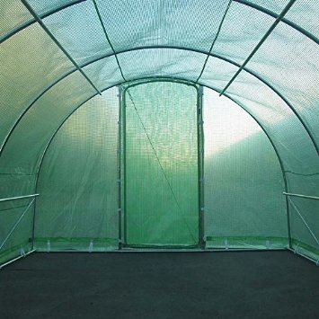 Polytunnels for Growing Tomatoes