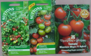 Tomato seeds - sowing times