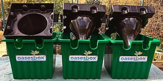 Oasesbox Self Watering Planter
