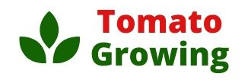 Tomato Growing Logo